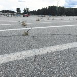 Driver fees to fix parking lot