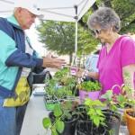 Rockingham Farmers' Market returns April 30