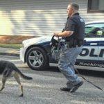 911 caller describes Rockingham homicide scene